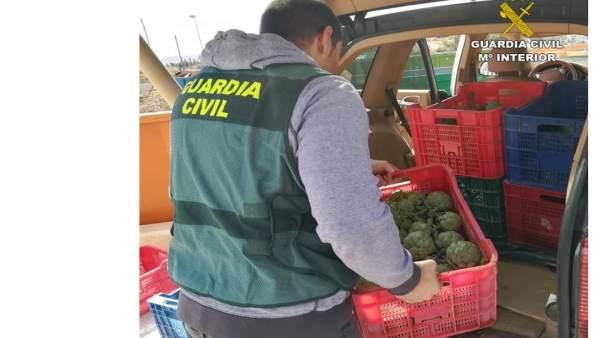 Alicante.- Sucesos.- Dos detenidos y tres investigados por hurtar más de 250 kil