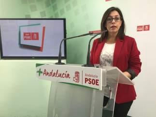 Jaén.- PSOE pide información sobre la instalación de coches promocionales en cal