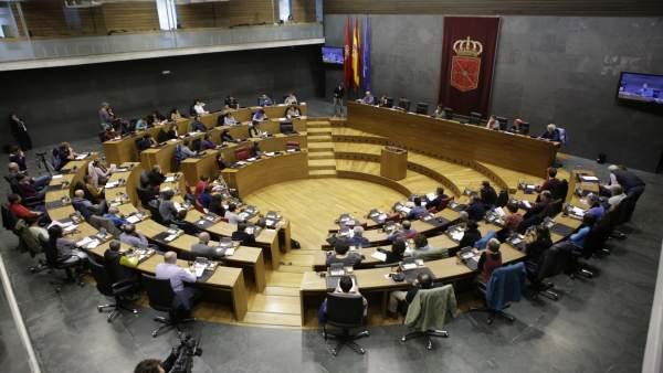 El Parlamento de Navarra celebrará el martes un pleno social sobre el impacto de