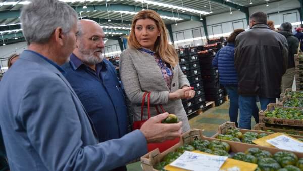 Almería.- La Academia Andaluza de Gastronomía y Turismo conoce el 'modelo agríco