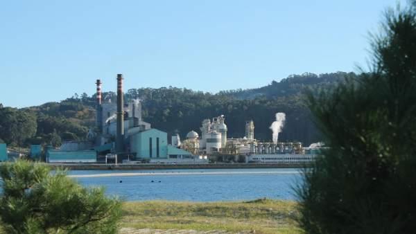 A Plataforma Pro Industria de Pontevedra asegura que o peche de Ence sería 'o fi