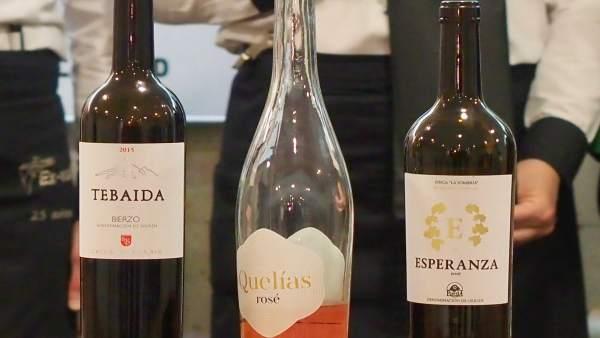 El tinto del Bierzo Tebaida 2015, elegido vino del Museo y del 20 Aniversario de