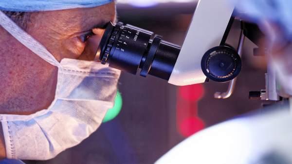 Investigador, microscopio