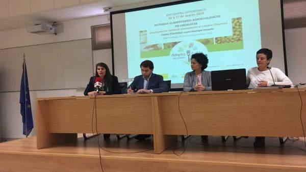 Córdoba.- La Junta destaca el 'presente brillante y futuro prometedor' de la agr