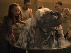 Dumbo, el elefante de enormes orejas, en su encarnación en imagen real.