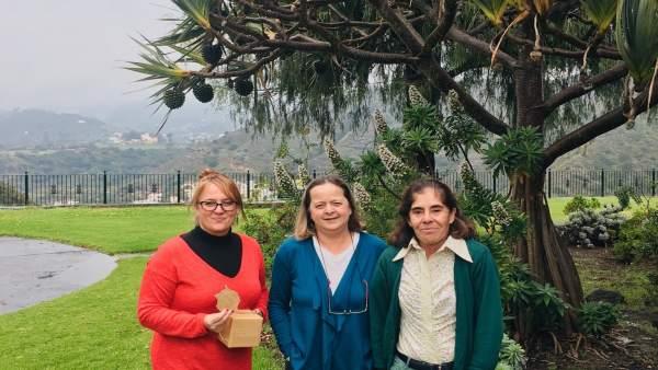 El Jardín Canario y la ULPGC logran usar plantas invasoras para generar fibras i