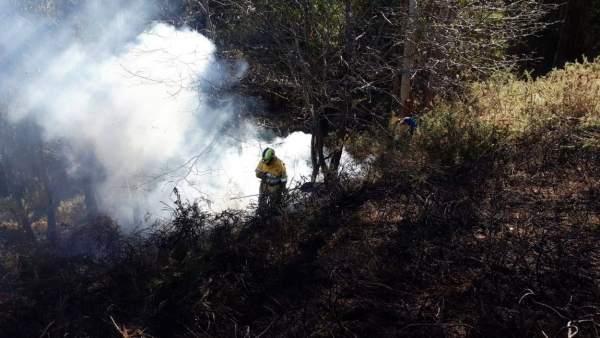 Dos incendios forestales activos en Cantabria, sin riesgo para personas o edific