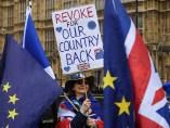 Activista pro Unión Europea