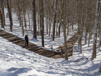 Paseo nevado