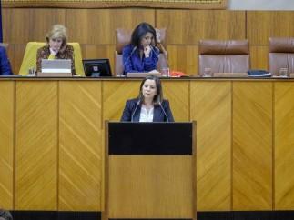 La portavoz adjunta de Vox y diputada en el Parlamento de Andalucía, Ángela Mulas.