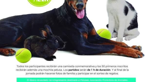 La protectora de animales Pelusas organiza la II Jornada solidaria ...