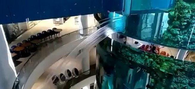 Rotura en un acuario cilíndrico