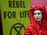 Colores y rebeldía contra el cambio climático