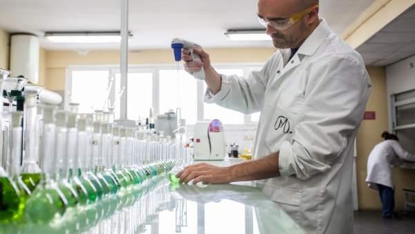 Metallo Spain aumenta su producción hasta los 207 millones e invierte más de 1,5 millones en Seguridad y Medio Ambiente