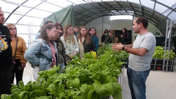 Málaga.-La Noria clausura el primer curso de especialización en acuaponía de España con la formación de 18 profesionales