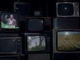 Vídeo de campaña de Pacma