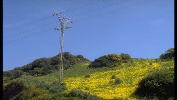 Cádiz.- Endesa invierte 150.000 euros en actuaciones para robustecer el suministro eléctrico en Los Barrios