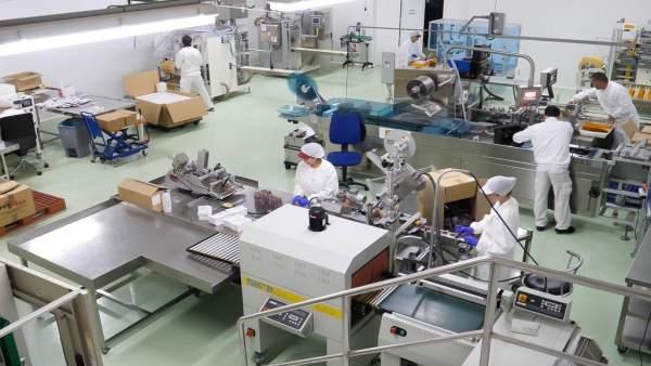 Málaga.- Economía.- Triselecta comercializa nueve toneladas de azafrán al año en los mercados internacionales