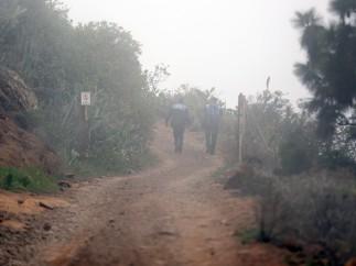 Agentes de la Guardia Civil y la Policía Local en el municipio de Adeje, al sur de la isla de Tenerife.