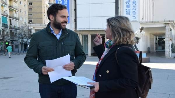 Málaga.- El PSOE exigirá en pleno un nuevo concurso transparente y democrático para la gestión del CAC de Málaga