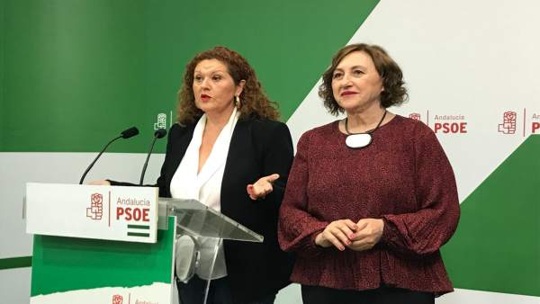 Cádiz.-28A.-PSOE dice que 'con Pedro Sánchez la provincia ha vuelto a la agenda de Gobierno' y pide seguir 'esa senda'