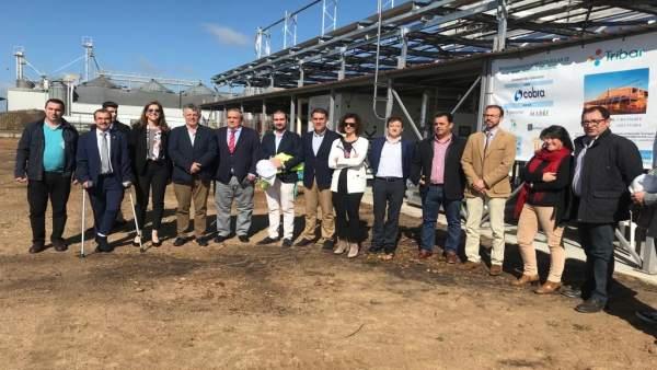 Extremadura desarrolla una instalación innovadora que combina el uso de biomasa y tecnología solar