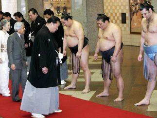 Encuentro con luchadores de sumo