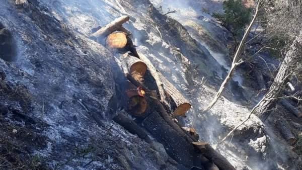 Málaga.- Sucesos.- Declarado un incendio agrícola en Yunquera