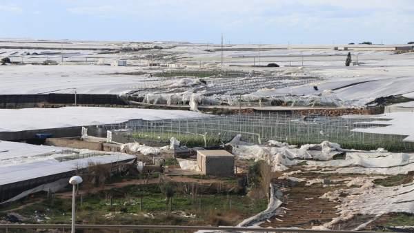 Invernaderos dañados por el paso de un tornado