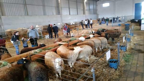 Zaragoza.- Guillén subraya en Épila la apuesta de Aragón por la agroindustria para asentar población en el medio rural