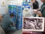 Sucesos.- La Guardia Civil decomisa más de una tonelada de pescado en dos pescaderías y en una lonja