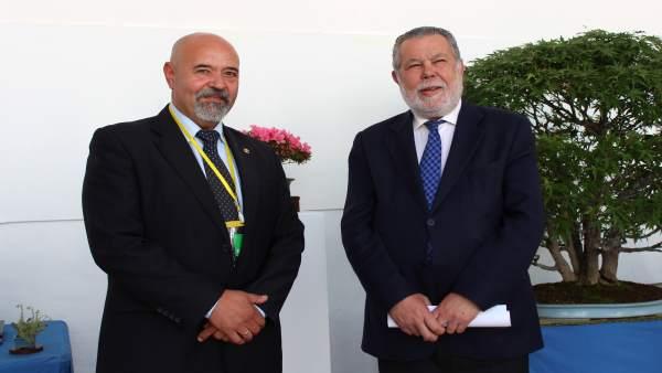 CórdobaÚnica.- El Palacio de la Merced acoge la 'Exposición de Primavera de Bonsái'