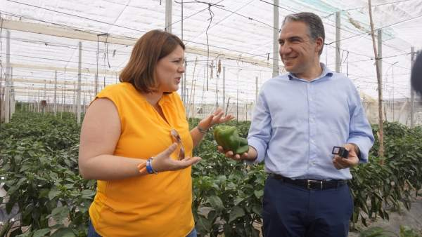Málaga.- 26M.- Bendodo asegura que el PP quiere convertir la Axarquía en un 'referente turístico y agrícola'