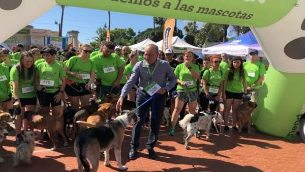 Málaga.- La quinta edición de la Málaga Dog Party reúne a unos 15.000 asistentes