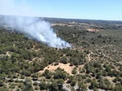 Sucesos.- Confirmado un incendio forestal en Son Verí