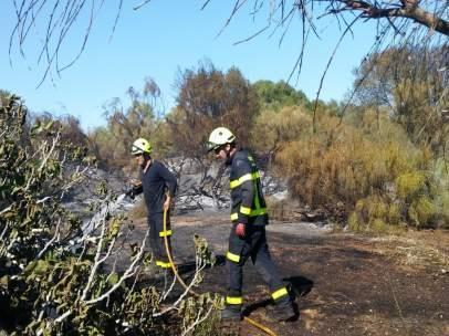 Cádiz.- Sucesos.- Bomberos actúan en un incendio de vegetación en El Puerto propagado por el viento a jardines privados