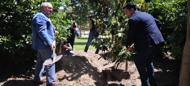 Granada.- Turismo.- Granada distinguirá a los establecimientos hosteleros comprometidos con el medio ambiente
