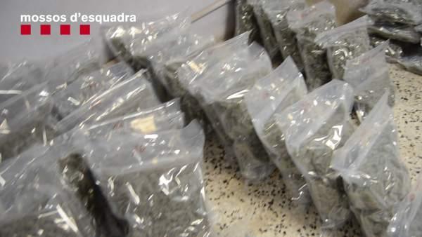 Sucesos.- Cae un grupo dedicado a la compraventa de droga en Lloret de Mar (Girona)