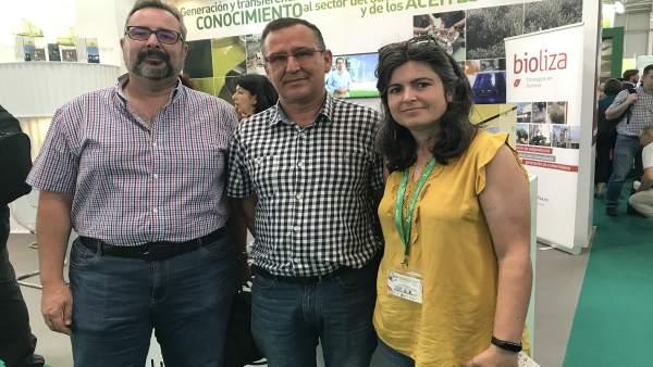 Jaén.- Presentado en Expoliva un proyecto innovador sobre cubiertas herbáceas en diferentes tipos de olivar