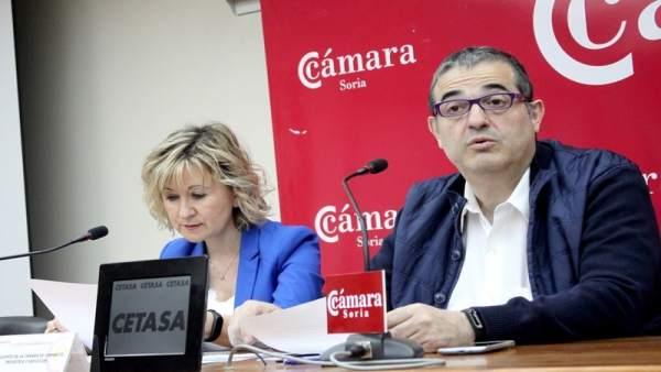 Más del 50% de los jóvenes del Programa PICE se ha incorporado al mercado laboral en Soria
