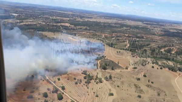 Huelva.- Sucesos.- Estabilizado un incendio declarado en Beas, en el paraje Dehesa Pan y Ajo