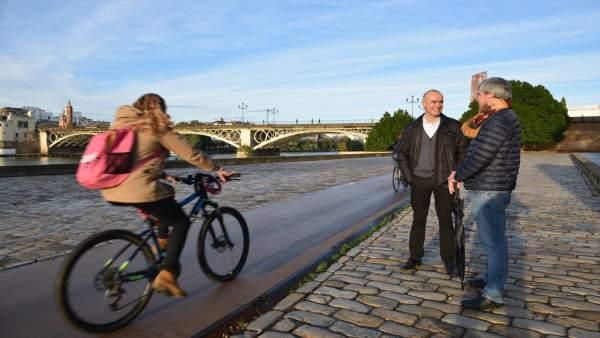 Carril bici en el Paseo Marqués del Contadero de Sevilla
