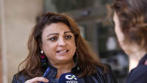 Valido valora la aprobación 'in extremis' del PIEC y la achaca a la 'presión' del Gobierno de Canarias