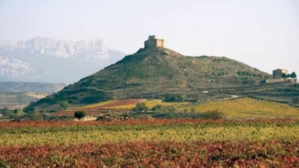 El PR+ exige al Gobierno de La Rioja hacerse con la propiedad del Castillo de Davalillo y optar al 1,5% Cultural