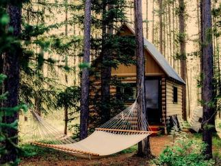 Cuatro lugares increíbles para dormir en los árboles