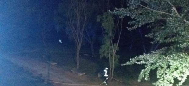 Los bomberos controlan un incendio provocado por las pelusas en la orilla del río Carrión en Palencia