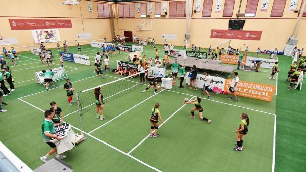 Sevilla.- Tomares vuelve a ser epicentro del voleibol regional con el Campeonato Andaluz de Voley y el Open 'Promesas'