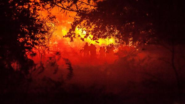 El gallego se oye por primera vez en Cannes de la mano del film 'O que arde', de Oliver Laxe