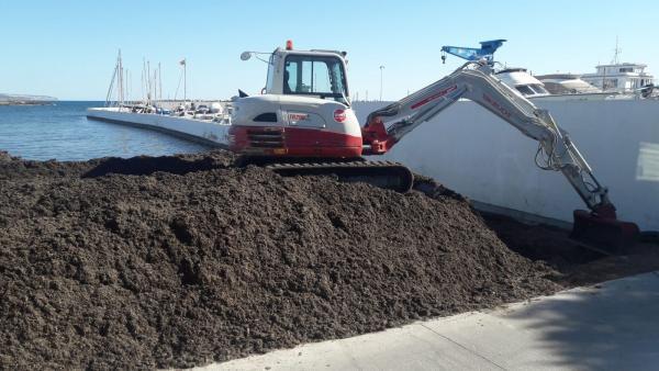 Técnicos de Emaya retiran 535 toneladas de posidonia acumulada en cala Gamba tras diez días de trabajo