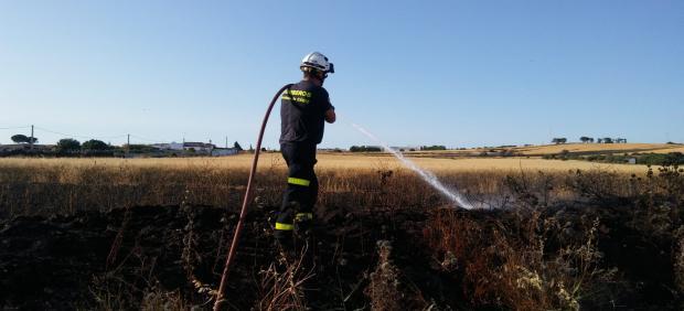 Cádiz.- Sucesos.- Bomberos intervienen en un incendio de trigal en Chiclana y otros nueve fuegos de vegetación